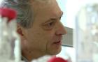 Témoignage : Guillaume Bécard, Directeur de laboratoire au CNRS / Paul Sabatier