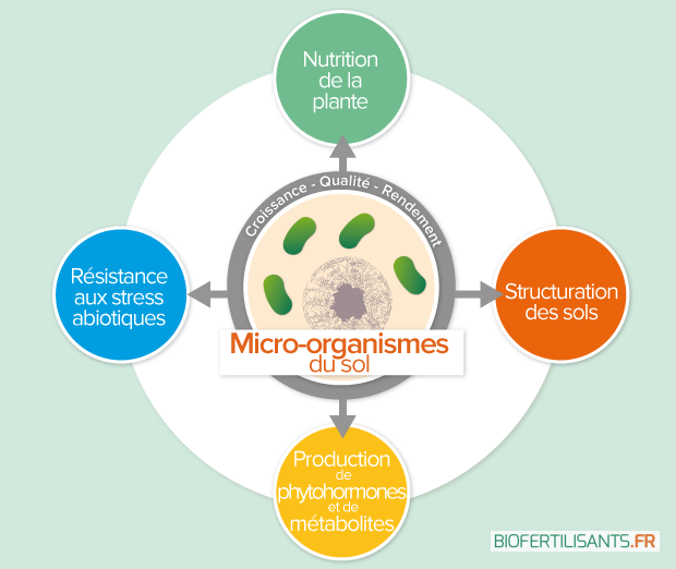 VisuelArticlesBeneficeAgro