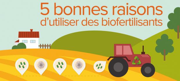 5 bonnes raisons d'utiliser des biofertilisants en agriculture